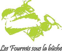 logo fourmis